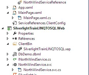 Silverlight .NET RIA Services Avec LINQ TO SQL