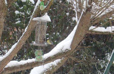 janvier 2013, entre 10 et 15 cm de neige
