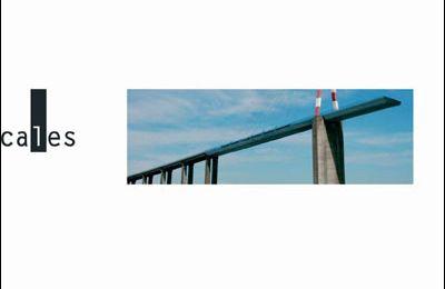 « Naissance d'un pont » de Maylis de Kerangal, Verticales, 2010 (F)