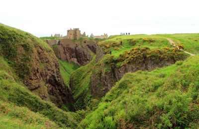 Chateau Dunnottar - ECOSSE