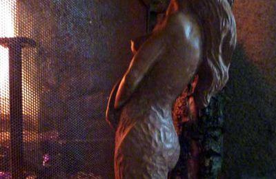 La Sirène-mystère au coin du feu-Méduse Rhizostoma