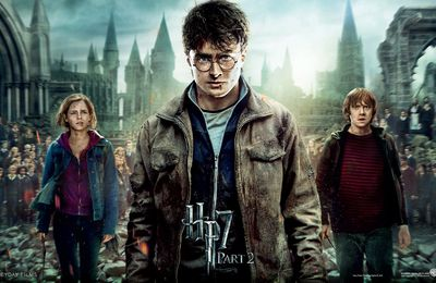 Le contenu du dvd Harry Potter 7.2
