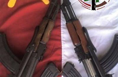Le PC Libanais sur 'la deuxième révolution égyptienne': «La chute des Frères musulmans a un impact sur toute la région»