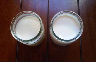 Yaourts au lait de soja Soyabella (comparatif)