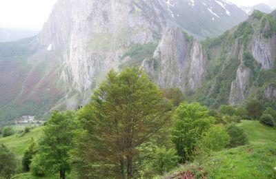Séjour en Vallée d'Aspes
