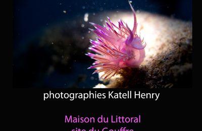 """""""20 Lieux sous la Mer"""" : Exposition de Photographies"""