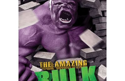 The Amazing Bulk: critique et DDL