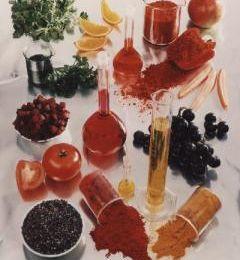 La gélatine ; les additifs et l alcool