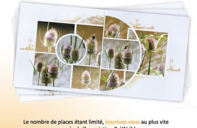 scrap'party du 15 Octobre