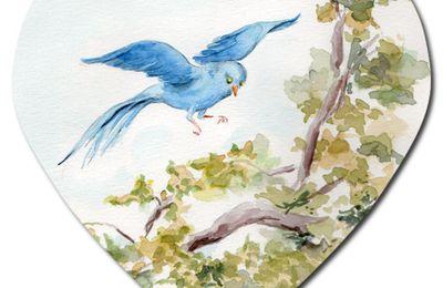 Poème : L'oiseau du rêve