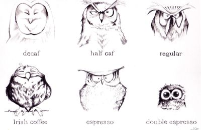 Owls & coffee