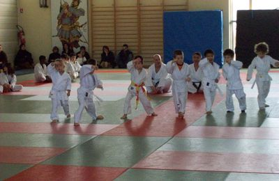 REPRISE BABY KARATE DO 2014-2015