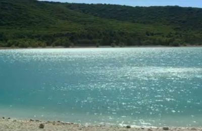 L'Inconnu du lac d'Alain Guiraudie... ou Sans coup d'aile ivre...