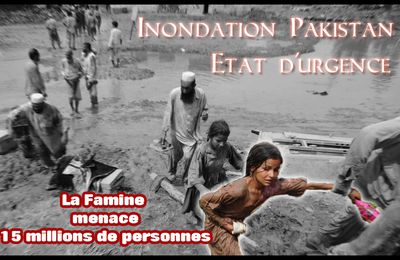Inondations Pakistan, ETAT D'URGENCE