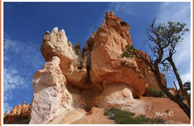 USA.Bryce canyon.Other vew.