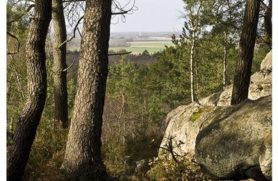 Pour un Parc National à Fontainebleau
