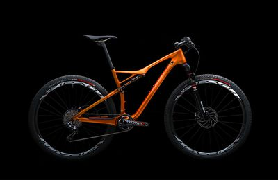 EPIC S-WORKS BURRY STANDER LTD !