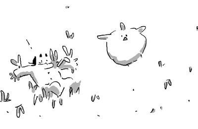 -poule volante-