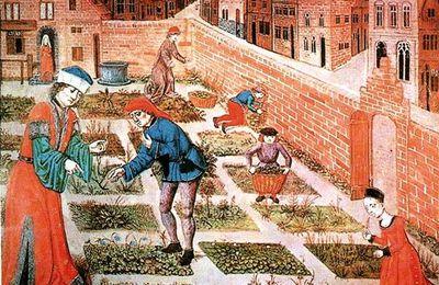 La médecine vétérinaire au Moyen âge.