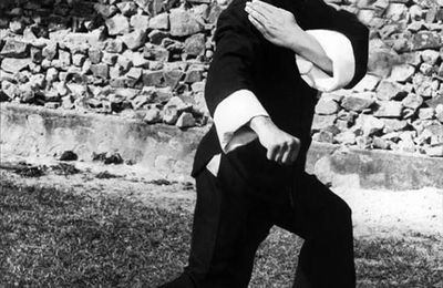 Les films de Bruce Lee bientôt interdits en France?