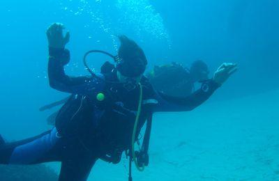 Brève plongée dans l'archipel maltais