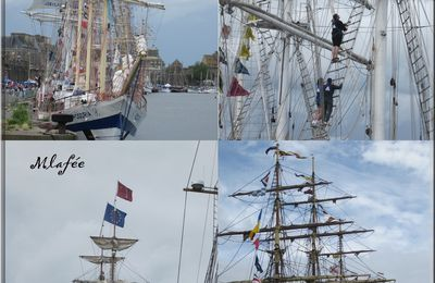 Tall ship ..... grand spectacle.......