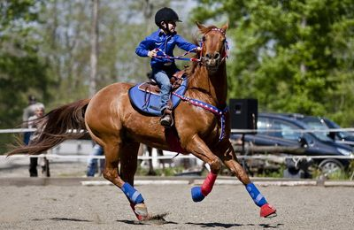 2011/04/17 Poney club de Vigoulet (31)