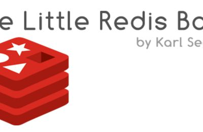 The little redis book