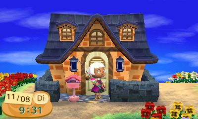 Ma pi ce collection ballon journal animal crossing new for Extension maison animal crossing wild world