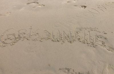 inscrit sur le sable :