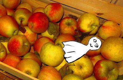 Te- Chan est tombé dans les pommes...