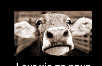 Panneaux Abolition - Libération animale