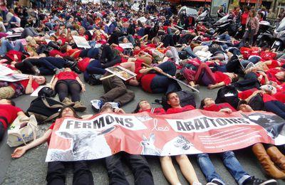 Compte-rendu de la marche pour la fermeture des abattoirs 2013 à Paris