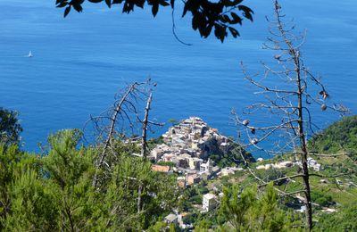 Italie: Cinque Terre, Toscane, Ile d'Elbe