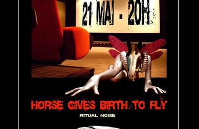 HORSES GIVE BIRTH TO FLY + une installation de projections super 8 sur bandes scotchées / 21 mai