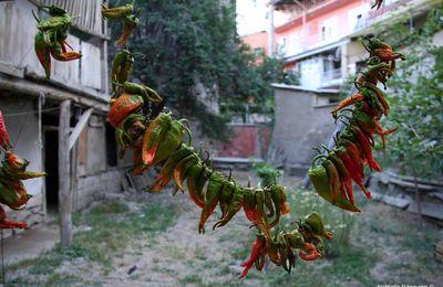 Dans une maison anatolienne plus que centenaire