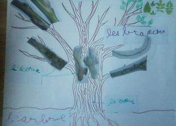 affiche de l'arbre