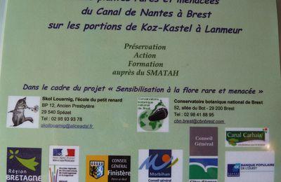 Flore rare et menacée en Centre Ouest Bretagne