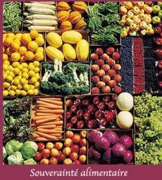 Main basse sur le patrimoine alimentaire de l'humanité