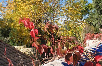 spleen d'automne....