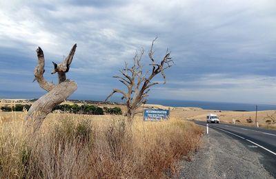 L'australie - 14 : Kangaroo Island