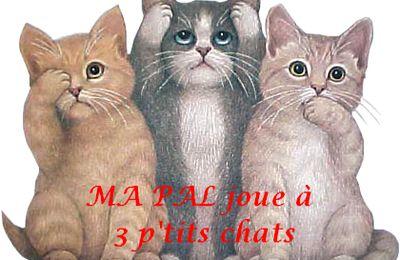 Je joue avec ma PAL à 3 p'tits chats