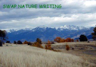 Swap back Nature writing