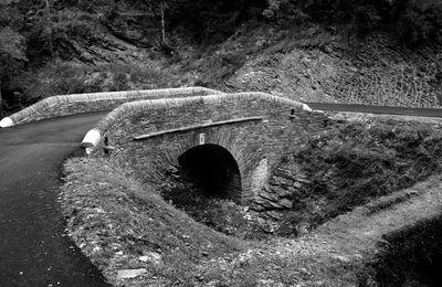 Inauguration du pont en pierre de Chadelcoste à St Andéol de Clerguemort 48