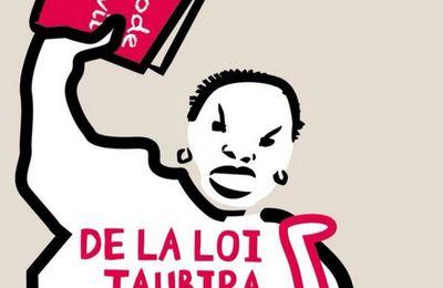 Manif pour tous : des militants victimes de gaz lacrymo ? Le dérapage était inévitable