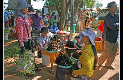 Instantanés du Cambodge