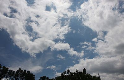 Mon ciel, ce lundi 10 juin ......