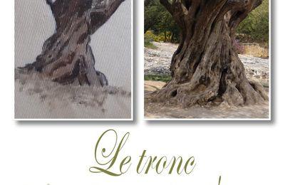 coeur de provence # 2