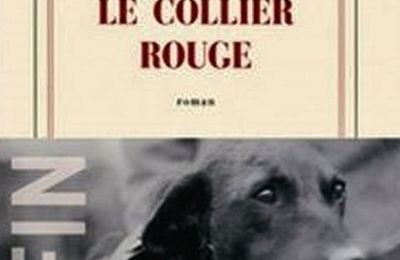 Le collier rouge - Jean-Christophe Rufin - Gallimard