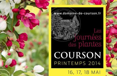 Journées des plantes de Courson 16-17-18 mai 2014
